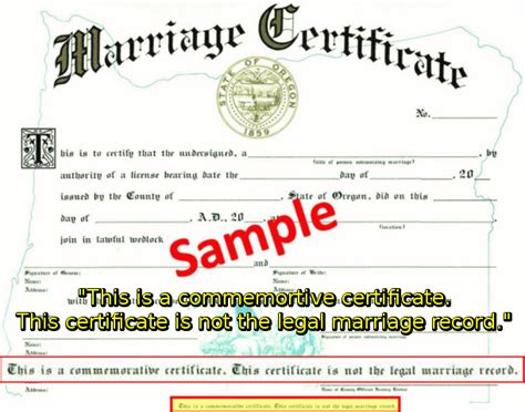 the marriage contract the bibles guide to understanding muslims books marriage what christians should