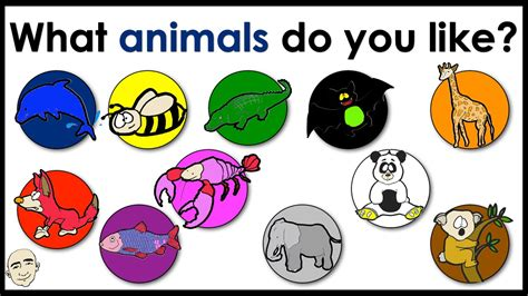 what color do i what animals do you like name of animals colors