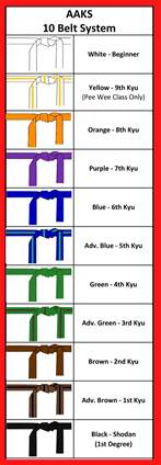 karate belt colors karate belt colors and rank