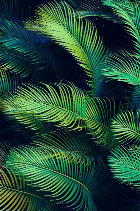 nature pattern tumblr you could use these sweet backgrounds 23 photos nature