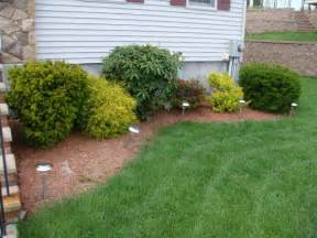 landscape excellent simple backyard landscaping cheap