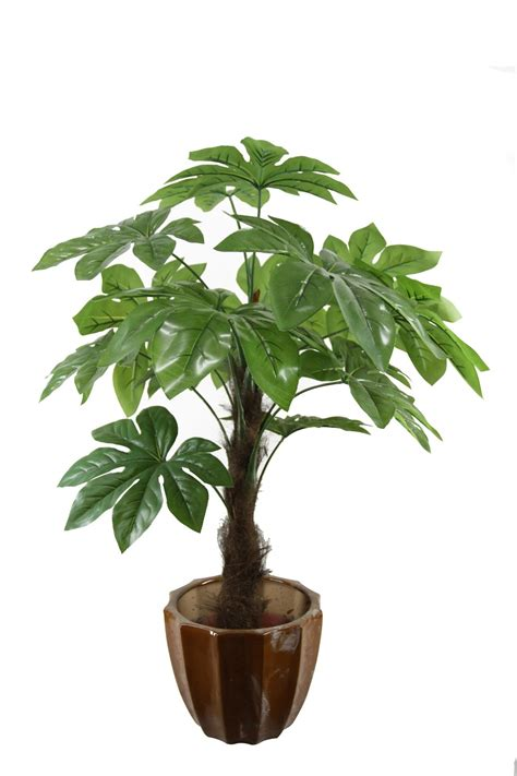 Decorative Plants For Home by China Fake Castor Plant Artificial Houseplant Jtla 0020