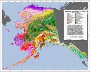 Gis Mapping Companies forest health monitoring clearinghouse