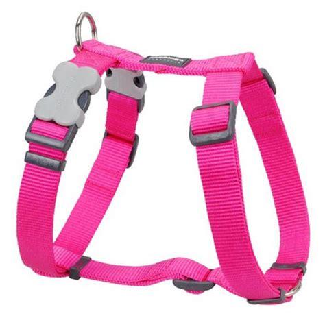 pink harness pink dingo collar tough