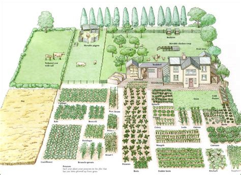 Permaculture Vegetable Garden Layout Covertress Family Scale Permaculture Gardening Garden Chickens Pinterest Gardening