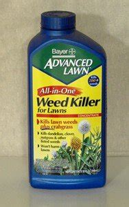 Backyard Flower Gardens Types Of Herbicides Names And Classifications