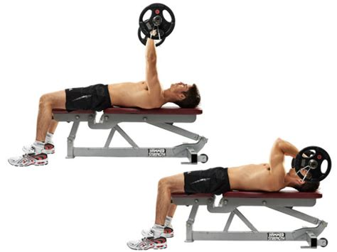flat bench tricep extension bicep and tricep workout medguidance
