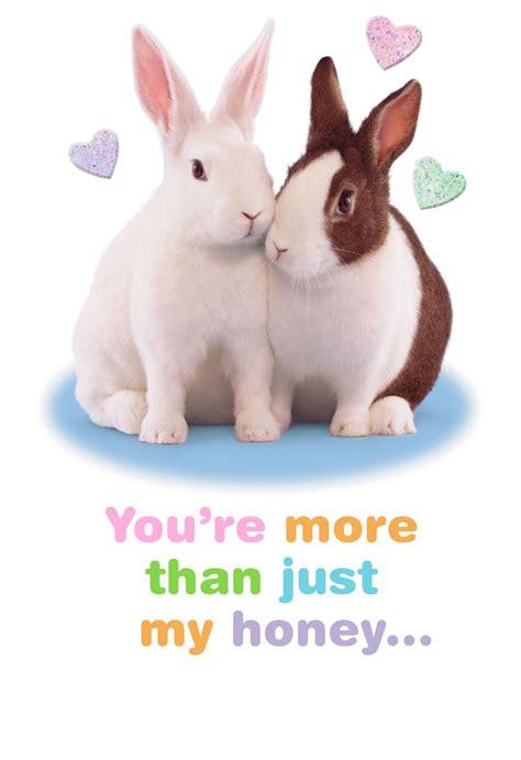 Snuggle Bunny Romantic Easter Card End Of Life Hallmark