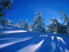 winter pictures for winter wallpapers winter wallpaper 2768467 fanpop
