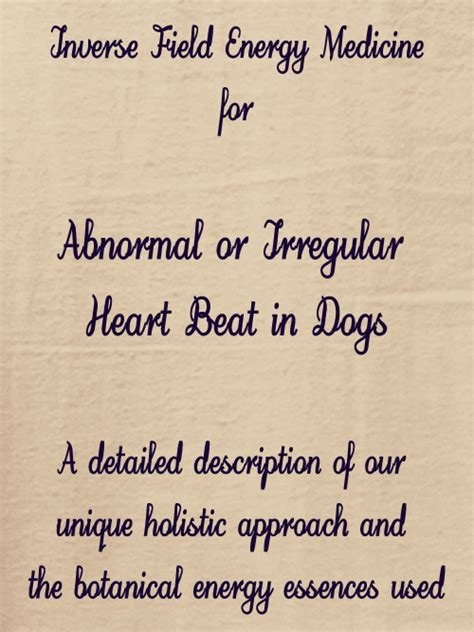 irregular heartbeat in dogs 12 essences to heal abnormal rhythm in dogs holistic treatment with energy