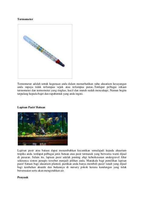 Termometer Air Akuarium senarai keperluan membina akuarium tropika