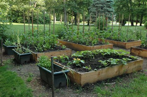 vegetable garden raised raised bed vegetable garden by kindman gardentenders
