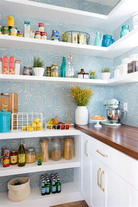 Mouse In Kitchen Pantry Farrow Mouse S Back Kitchen Cabinets Design Ideas