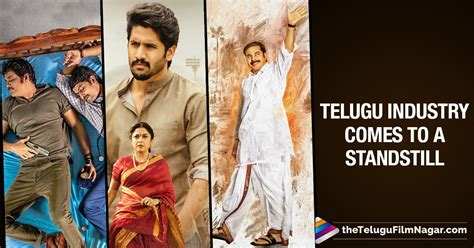 In Telugu Industry by Telugu Industry Halts All Events Today Tollywood
