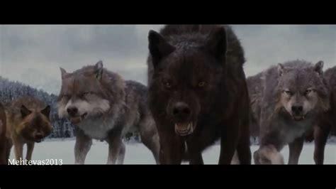 Saga Of The Wolf twilight wolves breaking www pixshark images