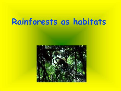 Rainforests As Habitats By Catherine41 Teaching Rainforest Powerpoint
