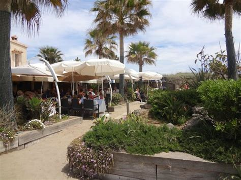 beach house restaurant beach house restaurant marbella restaurant reviews phone number photos tripadvisor