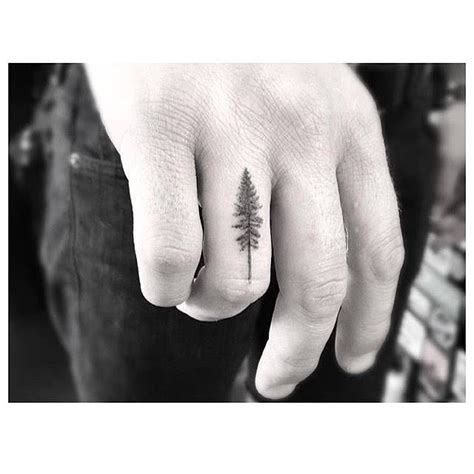 tree tattoo fine line style pine tree tattoo on the