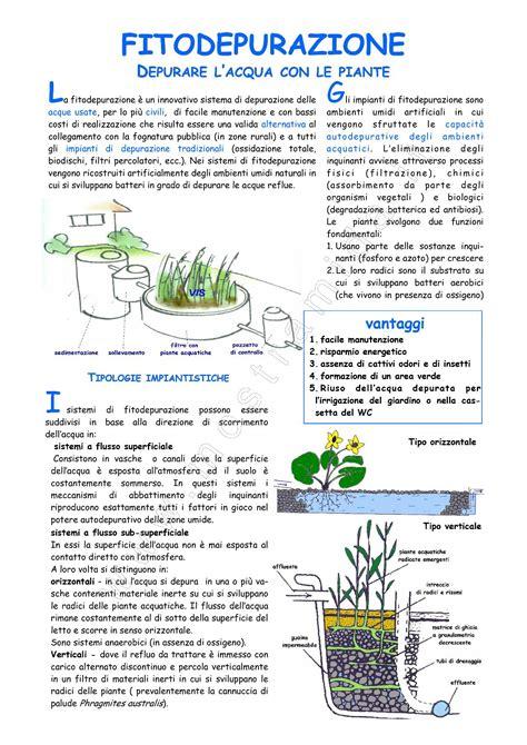 vasche fitodepurazione mida fitodepurazione depurazione dell acqua