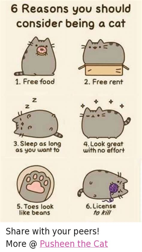 Pusheen Memes - 25 best memes about pusheen the cat pusheen the cat memes