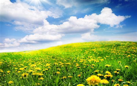 beautiful spring beautiful spring landscapes wallpapers www imgkid com