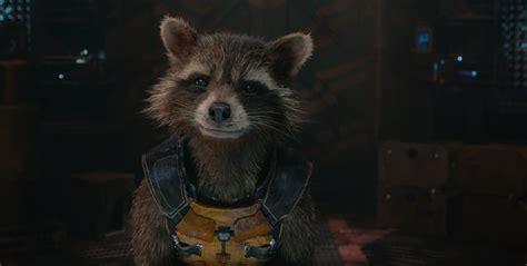 Rocket Raccoon 01 guardians of the galaxy rocket raccoon wallpapers