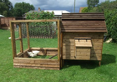the chicken house basics of how to build a chicken house chicken coop how to