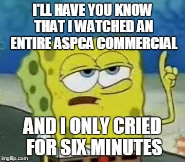 Aspca Meme - ill have you know spongebob memes imgflip