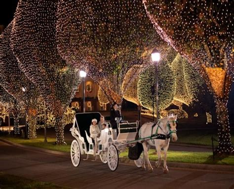 114 best carriages images on pinterest horse carriage
