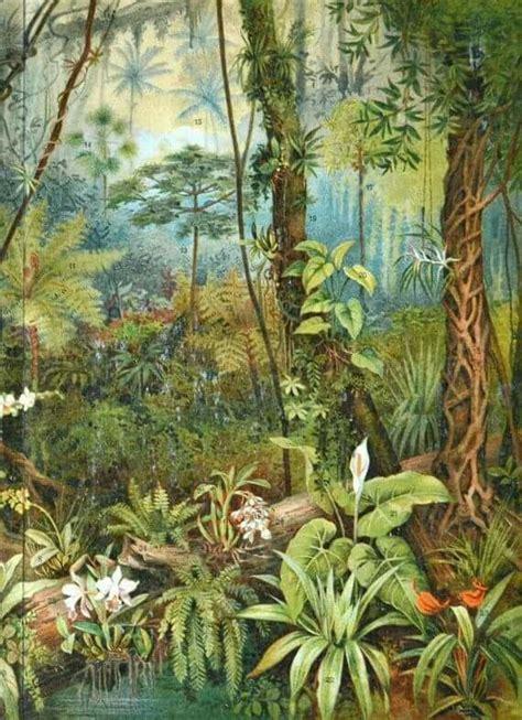 pin  weixuebing  tropical art forest mural