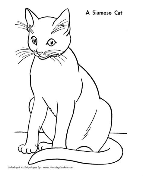 cat coloring pages printable siamese cat coloring page