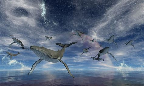 best lucid world of lucid dreaming learn how to your dreams