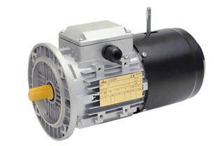 motore a gabbia di scoiattolo motori elettrici asincroni autofrenanti