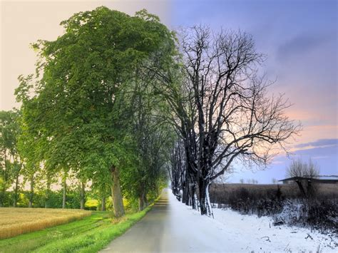 bettdecken winter und sommer galerie olympus fotoforum das forum f 252 r olympus fotografen