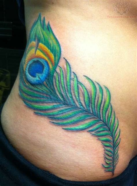 feather tattoo stomach peacock feather tattoo on stomach