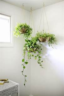 45 truly unique diy hanging planters you can easily make
