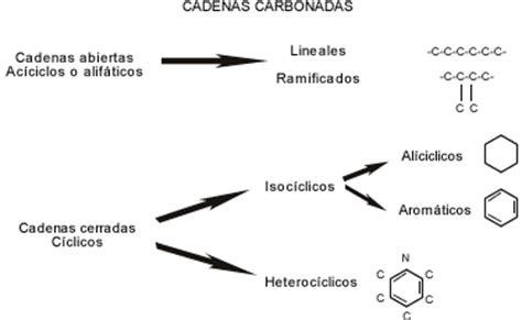 cuantas clases de cadenas carbonadas hay quimica del carbono cadenas carbonadas