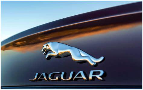 jaguar logo wallpapers hd backgrounds