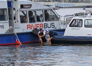 thames clipper dogs gardener julia wylie saves drowning labradoodle dog by