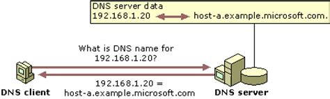 Dns Forward And Lookup Dns Server Installation Your Own Server Part 2 Windows Server 2003 Installation