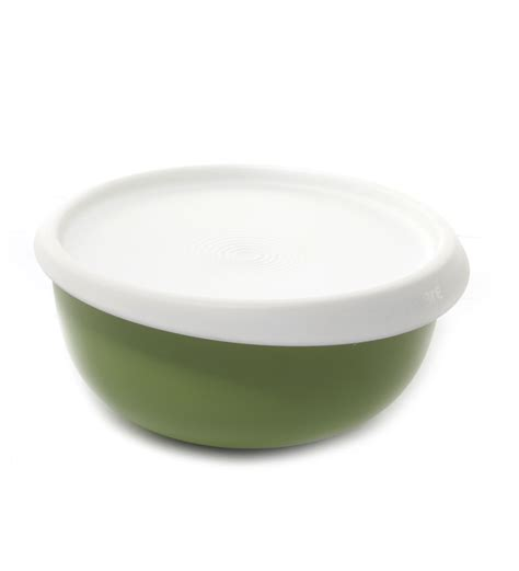 Blossom Plate Tupperware tupperware blossom bowl 550 ml 1 best deals with price comparison shopping price
