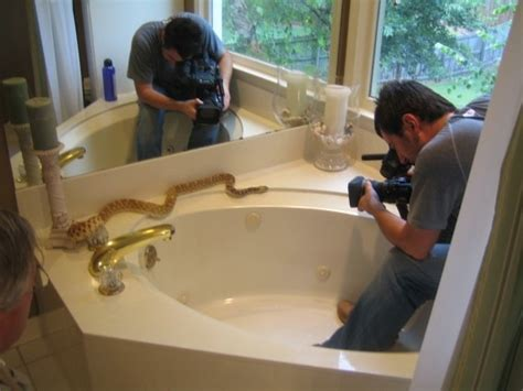 snaking a bathtub bathtub drain snake bathtub drain