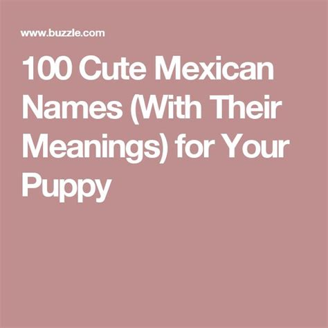 mexican puppy names 25 best ideas about mexican names on mexican food names mexican soup