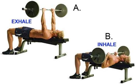 good form bench press how to breathe correctly during weight training goqii