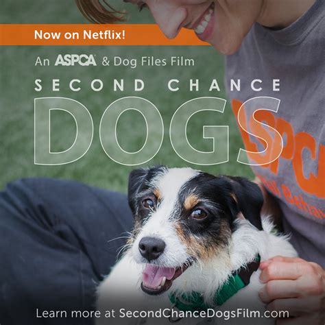 second chance puppies aspca documentary second chance dogs now available on netflix aspca
