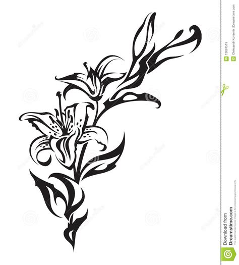 lily royalty free stock images image 13691519