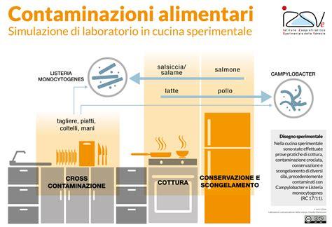 contaminazione alimentare contaminazioni alimentari in cucina simulate in laboratorio