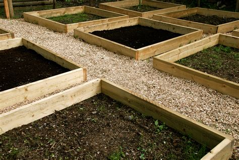 raised beds the modern gardener