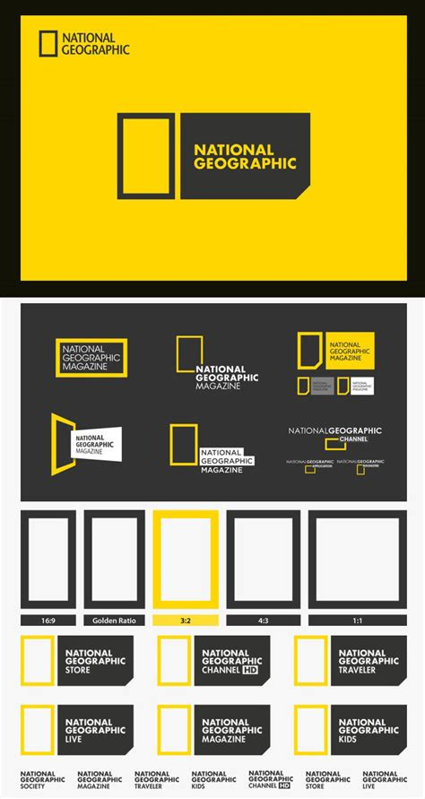 creative  beautiful branding identity design