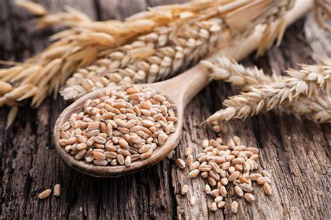 cucinare i cereali come cucinare i cereali e conservarli consigli utili
